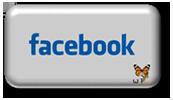 boton-gris-redes-sociales-facebook-170x100
