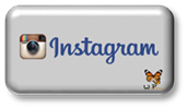 boton-gris-redes-sociales-instagram-170x100